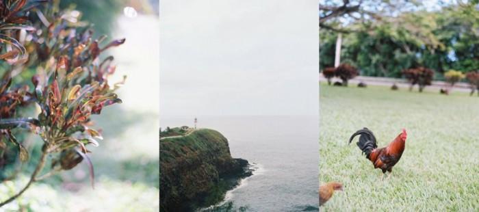 hawaii wedding photographer_0030